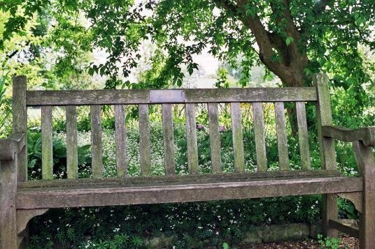 Oxford botanic garden close up of lyra and will 39 s bench for What time does the botanical gardens close